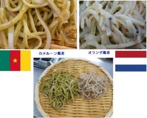 ワールドカップ必勝蕎麦.jpg