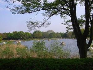昭和記念公園.jpg